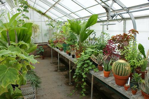 Flickriver Photoset 39 Wellesley College Botanic Garden 39 By Garden Lectures