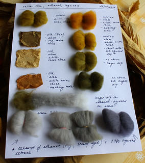 dyeing with plants