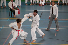 hapkido(0.0), tang soo do(0.0), individual sports(1.0), contact sport(1.0), sports(1.0), combat sport(1.0), martial arts(1.0), karate(1.0), taekkyeon(1.0), japanese martial arts(1.0), shorinji kempo(1.0),