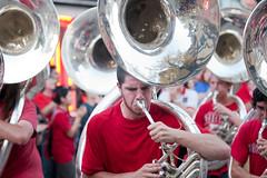 festival, sousaphone, carnival, crowd,