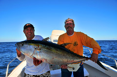 The world 39 s best photos of atun and sailfish flickr hive for San carlos mexico fishing