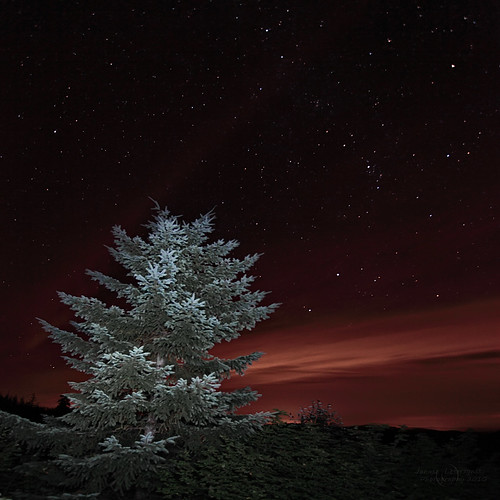 longexposure light lightpainting tree oregon stars bravo late viewpoint janusz leszczynski pickastar sunsethwy 002218