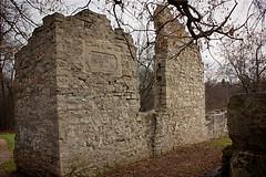 Doon Mill Ruins
