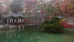 Buyeongji pond and Buyeongji pond