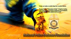 NPDF campaign 3