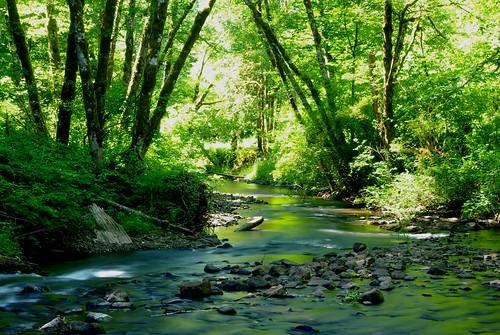 longexposure river long exposure pentax williamolson k200d pentaxk200d billyolson