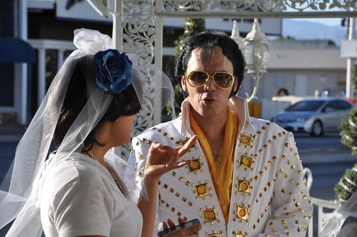 Shockie & Elvis
