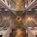 Notre Dame Ceiling ©nathangibbs