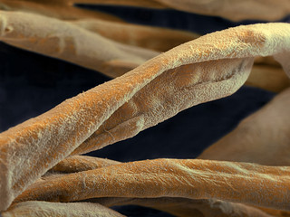 Dirt-repellent textile fibers based on nanotechnology (BASF)