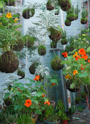 Un giardino sospeso pokayoke for Dondoli da giardino sospesi