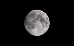 Moon 8-22-10