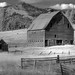 Small photo of Barn Cle Elem