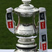 The FA Cup at Sutton United - 08/09/10