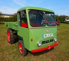Mulag