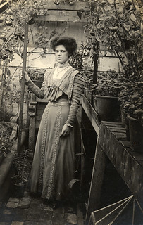 Lovely shot inside a small glasshouse in 1909