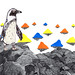 Penguin by www.sandradieckmann.com