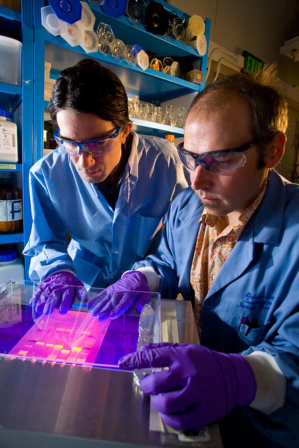 Kevin Sanbonmatsu and Scott Hennelly work at the National Stable Isotope Resource at Los Alamos National Laboratory (LANL)  to understand how ribonucleic acid molecules act as genetic switches to regulate protein synthesis.  Photo by LeRoy Sanchez.