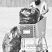 Small photo of Cart Pusher