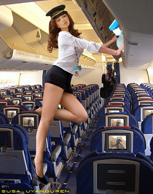 stewardess flickr   photo sharing