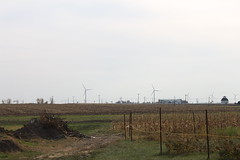 outdoor structure(0.0), polder(0.0), hill(0.0), mill(0.0), wind(0.0), prairie(1.0), agriculture(1.0), horizon(1.0), windmill(1.0), field(1.0), plain(1.0), wind farm(1.0), electricity(1.0), rural area(1.0),