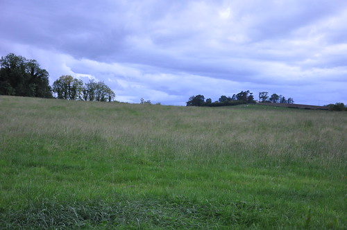 GOLA ABBEY - The now-demolished church was in this field