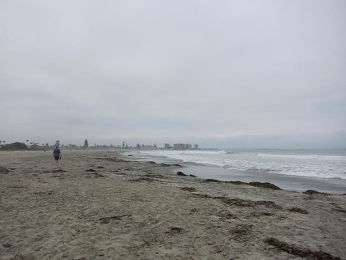beach, Hotel Del Coronado, ocean IMG_2923