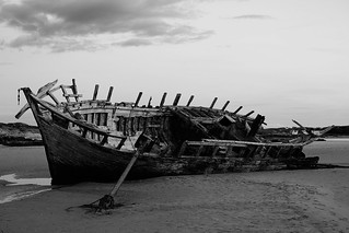 The remains of a shipwreck rotting on a beach.