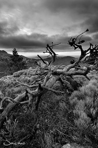 "Navacerrada, Spagna from the book ""Per chi suona la campana"" by Ernest Hemingway"
