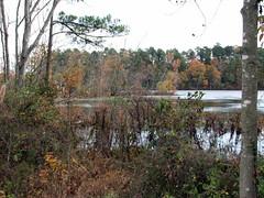 Walnut Creek Lake Raleigh NC 0476