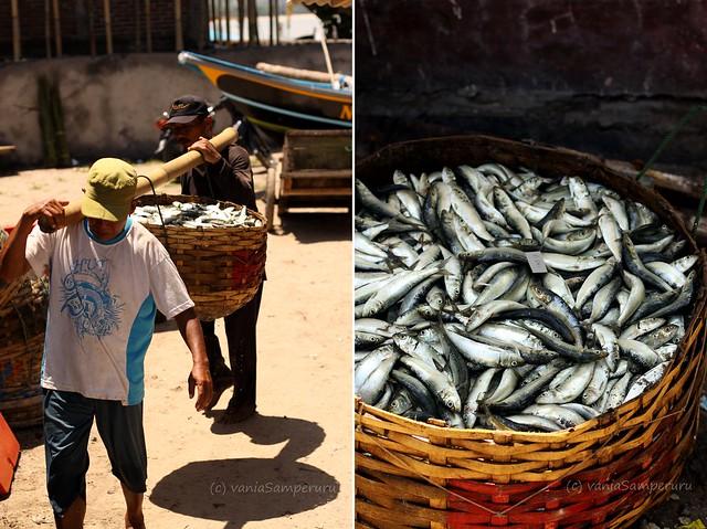 Fish Market, Jimbaran, Bali