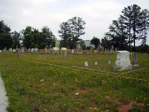 cemetery graveyard georgia dead headstones wildflowers dandelions conyers panoramicview informationsign cemeterymap almandcemetery