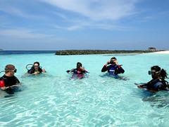 Dive Experience - Maldives