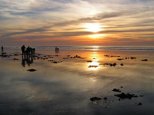 sunset beach longbeachwashington clamdigging
