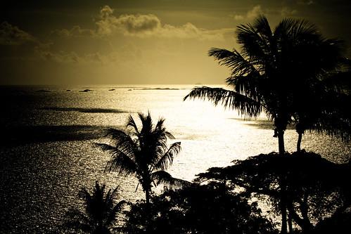 ocean sea naturaleza sunlight nature water silhouette clouds contraluz palms mar agua warm view puertorico resort palmtrees nubes vista caribbean tgif fajardo horizonte palmas elconquistador spellshot