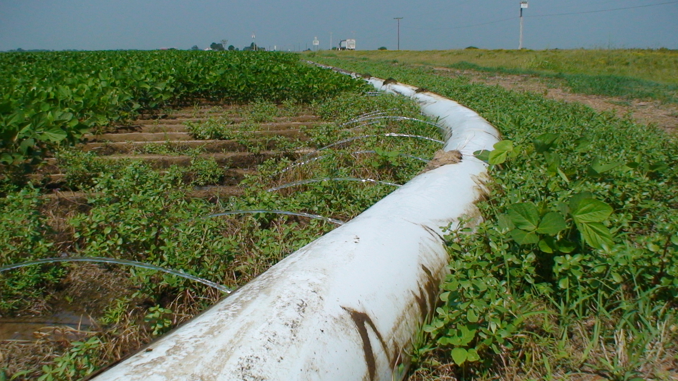 Polypipe Irrigation