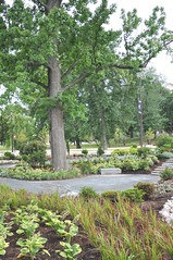 Peace and Friendship Garden