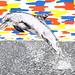 Dolphin by www.sandradieckmann.com