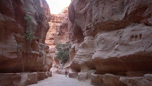 Garganta - Petra (Jordania) - 01