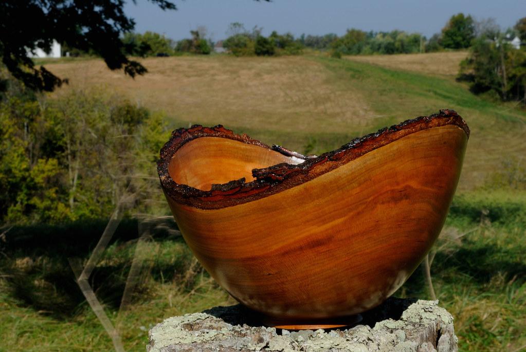 Natural edge cherry bowl