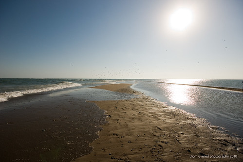 Point Pelee - Canada's Most Southern Point by thomevered