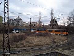 IMG_1556