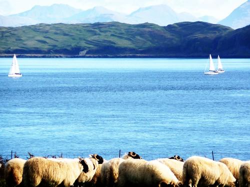 Loch Linnhe from Mull