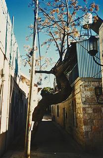 Jerusalem, 1999