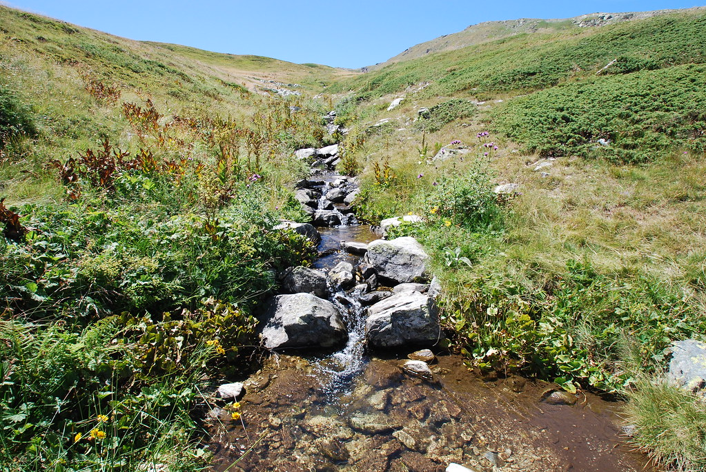 Stream in Pelister National Park