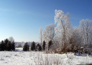 2005-02-01_10-47-27