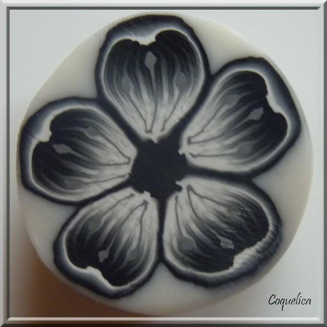 Cane fleur coeur noir et blanc flickr photo sharing Fleur noir et blanc
