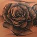 tattoo.rose by lee greene