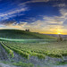 Sunset Over Chianti - (HDR Chiant, Italy)