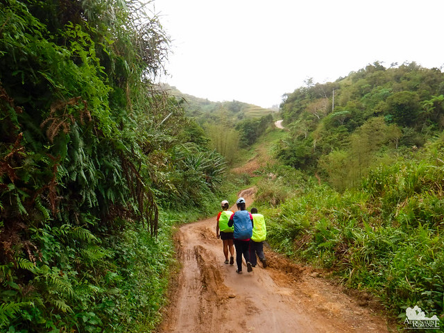 Trail to Mt. Manunggal
