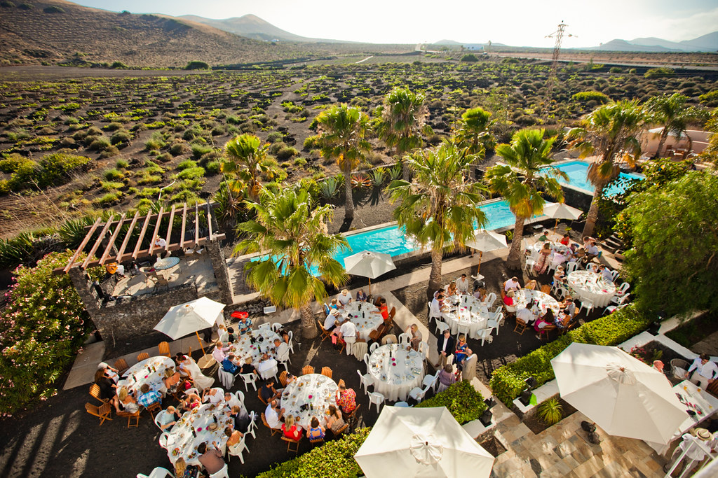 Lanzarote's vineyards